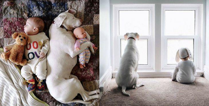 Drobček Archie a jeho psia strážkyňa Nora sú tou najroztomilejšou dvojicou, akú si kedy videl!