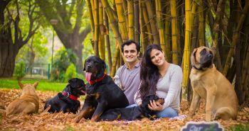 Tomuto páru odporúčali zbaviť sa svojich psov, kým príde na svet ich bábätko. Pozri ako zareagovali
